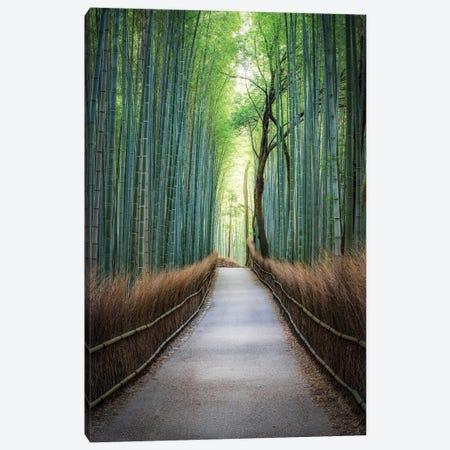 Arashiyama Bamboo Forest, Kyoto Canvas Print #JNB1625} by Jan Becke Canvas Art Print