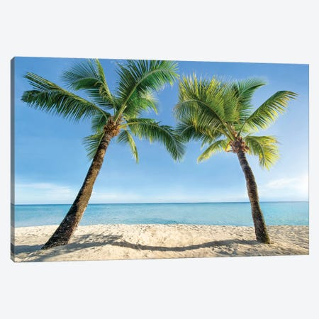 Two Palm Trees At The Beach Canvas Print #JNB162} by Jan Becke Canvas Artwork