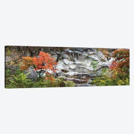 Shosenkyo Gorge National Park, Yamanashi Prefecture, Japan Canvas Print #JNB1643} by Jan Becke Canvas Art