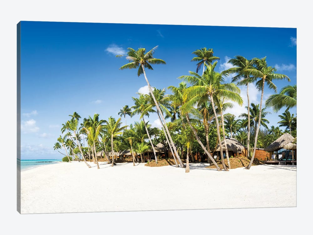 White Sand Beach With Palm Trees by Jan Becke 1-piece Canvas Print