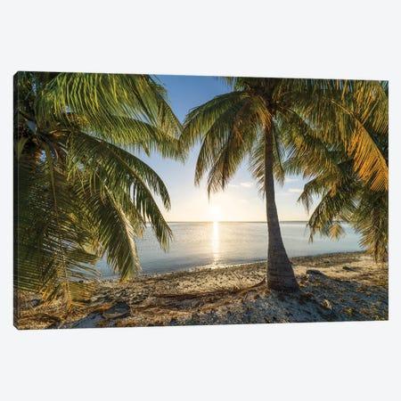 Sunset On The Palm Beach, South Seas, French Polynesia Canvas Print #JNB1686} by Jan Becke Canvas Art Print