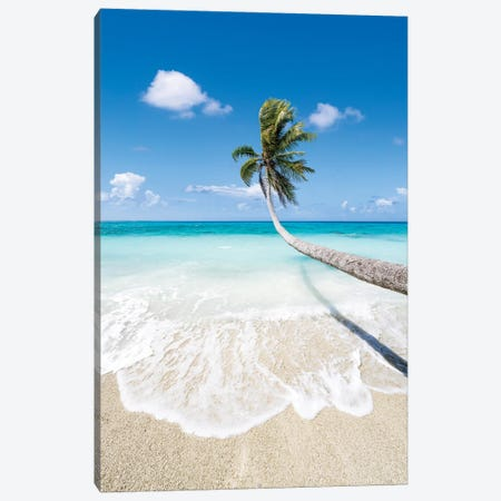 Hanging Palm Tree On A Beautiful Tropical Beach Canvas Print #JNB1712} by Jan Becke Canvas Wall Art