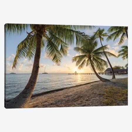 Palm Beach Sunset, French Polynesia Canvas Print #JNB1716} by Jan Becke Canvas Print
