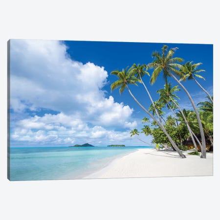 Palm Trees A The Beach, Bora Bora Atoll Canvas Print #JNB174} by Jan Becke Canvas Art