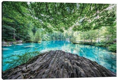 Blausee Lake In The Bernese Oberland Near Kandersteg, Switzerland Canvas Art Print