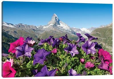 The Matterhorn In Spring Canvas Art Print
