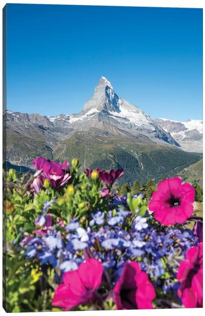 The Matterhorn In Switzerland During Spring Canvas Art Print