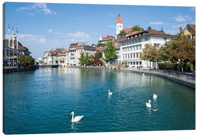 City Of Thun In The Canton Of Bern In Switzerland Canvas Art Print