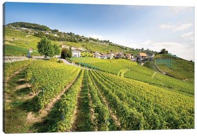 Unesco World Heritage Wine Terrace Near Lavaux, Switzerland Canvas Art Print