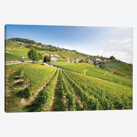 Unesco World Heritage Wine Terrace Near Lavaux, Switzerland 3-Piece Canvas #JNB250} by Jan Becke Canvas Wall Art