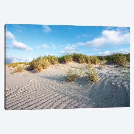 Sand Dunes Near The North Sea Coast Canvas Print #JNB289} by Jan Becke Canvas Print