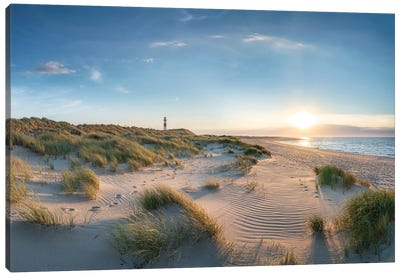 Dune Landscape With Lighthouse At Sunset, North Sea Coast, Sylt, Germany Canvas Art Print