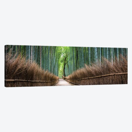 Arashiyama Bamboo Forest Canvas Print #JNB4} by Jan Becke Canvas Artwork
