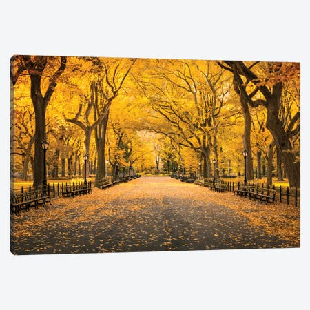 Central Park In Autumn Canvas Print #JNB768} by Jan Becke Canvas Art