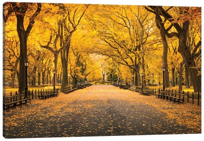 Central Park In Autumn Canvas Art Print