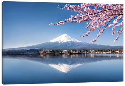Mount Fuji In Spring Canvas Art Print