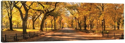 Central Park Panorama In Autumn, New York City, USA Canvas Art Print