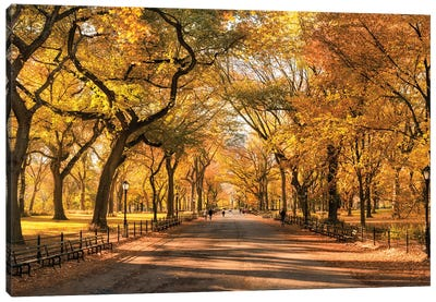 Autumn Colors In Central Park, New York City, USA Canvas Art Print