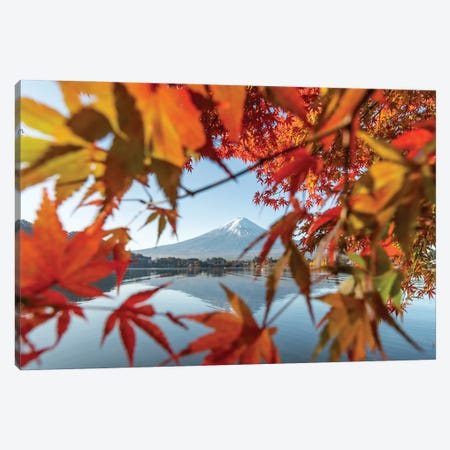 Japanese Maple Tree And Mount Fuji At Lake Kawaguchiko, Yamanashi Prefecture, Japan Canvas Print #JNB843} by Jan Becke Canvas Art Print
