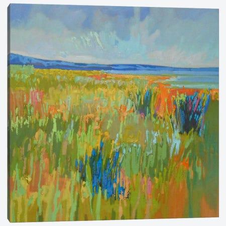 Lake Shore II Canvas Print #JNE12} by Jane Schmidt Canvas Art Print