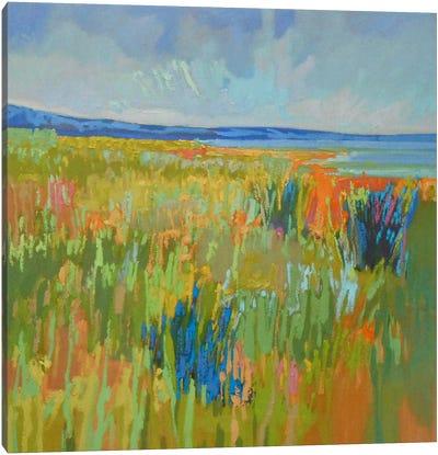 Lake Shore II Canvas Art Print