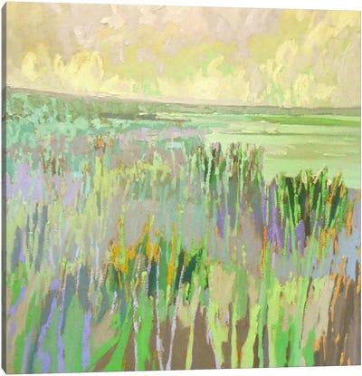 Lake Shore III Canvas Art Print