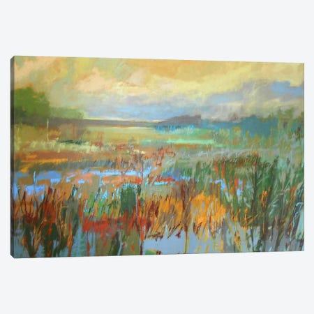 Marsh In May Canvas Print #JNE14} by Jane Schmidt Canvas Artwork