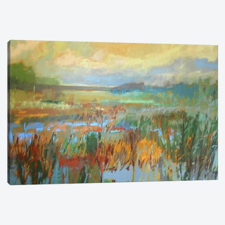 Marsh In May Canvas Print #JNE14} by Jane Schmidt Canvas Artwork