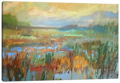 Marsh In May Canvas Art Print