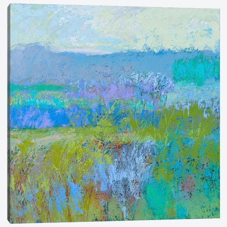 Color Field XLI Canvas Print #JNE1} by Jane Schmidt Canvas Artwork