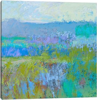 Color Field XLI Canvas Print #JNE1