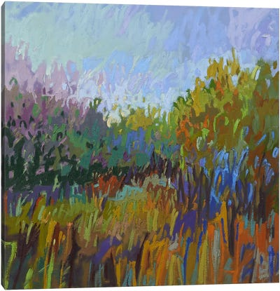 Color Field LXII Canvas Print #JNE2