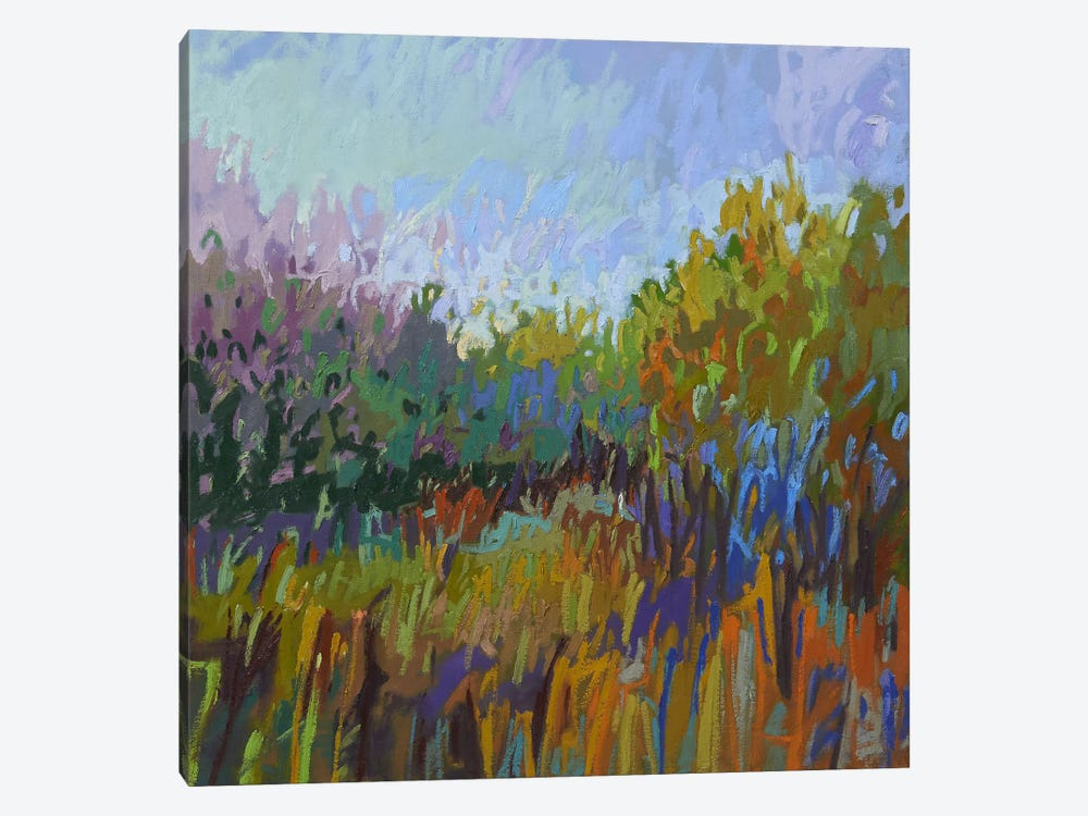 Color Field LXII by Jane Schmidt 1-piece Canvas Artwork