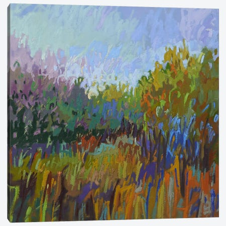 Color Field LXII Canvas Print #JNE2} by Jane Schmidt Canvas Artwork