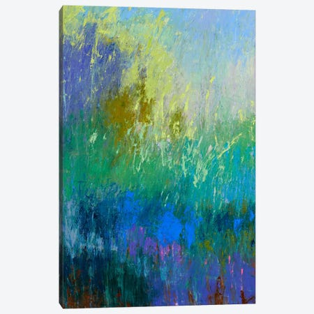 Landscape Within I Canvas Print #JNE3} by Jane Schmidt Canvas Art