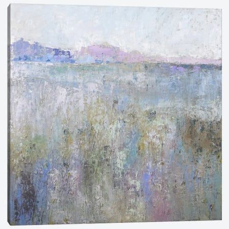 Paysage XIII Canvas Print #JNE6} by Jane Schmidt Art Print