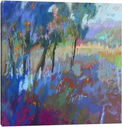 Color Field 44 Canvas Art Print