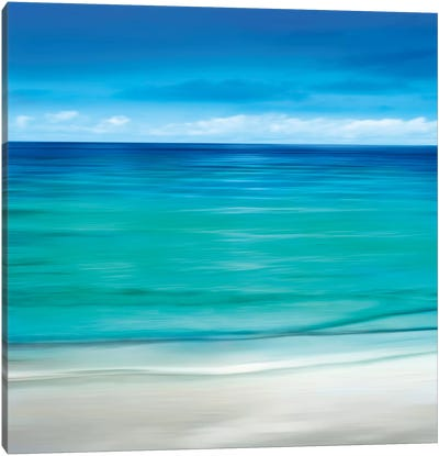 Paradise II Canvas Art Print
