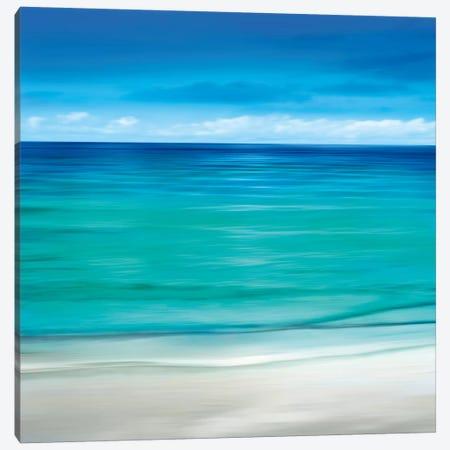 Paradise II Canvas Print #JNF2} by Jennifer Bailey Canvas Art Print