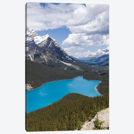 Banff National Park, Alberta, Canada. Peyto Lake Along The Icefields Parkway Scenic Drive. Canvas Print #JNH23} by Janet Horton Canvas Print