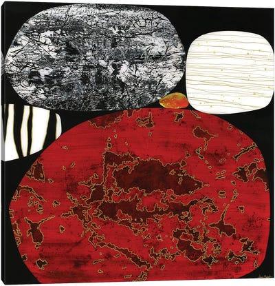 Obsidian Canvas Art Print