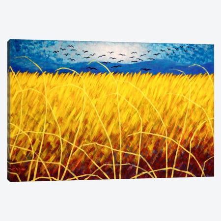 Homage To Van Gogh #1 Canvas Print #JNN15} by John Nolan Art Print