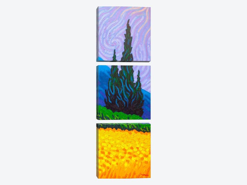 Homage To Van Gogh #2 by John Nolan 3-piece Canvas Art
