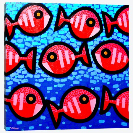 9 Happy Fish Canvas Print #JNN1} by John Nolan Canvas Print