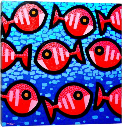 9 Happy Fish Canvas Art Print