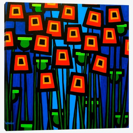 Night Poppies Canvas Print #JNN22} by John Nolan Art Print