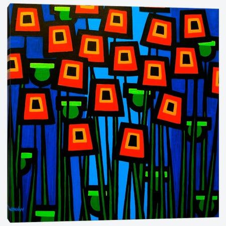 Night Poppies Canvas Print #JNN22} by John Nolan Art Print