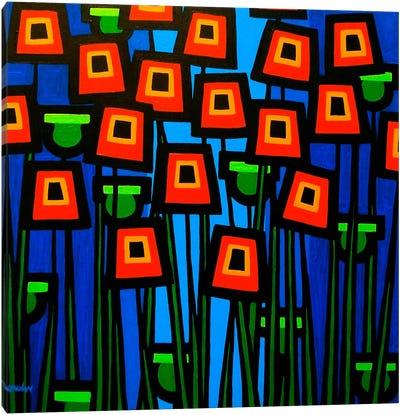 Night Poppies Canvas Art Print