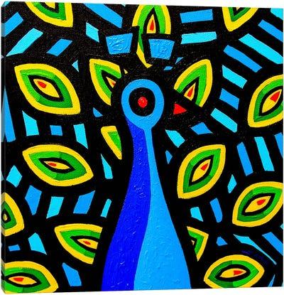Peacock #1 Canvas Print #JNN24