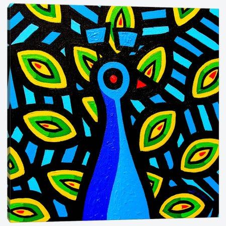 Peacock #1 Canvas Print #JNN24} by John Nolan Canvas Wall Art
